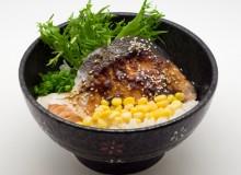 salmon_fish_don